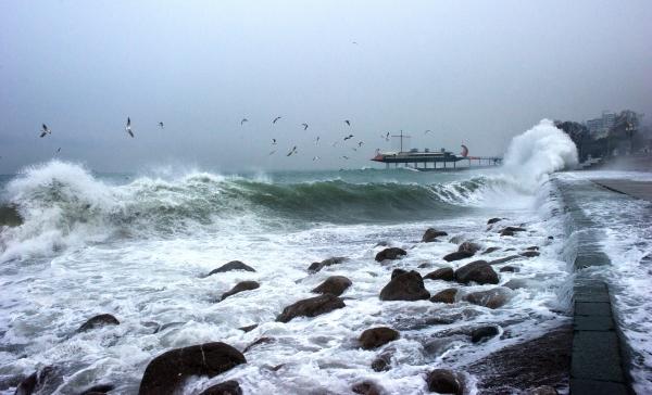Ученые: высота волны вЧерном море может достигать 20 метров