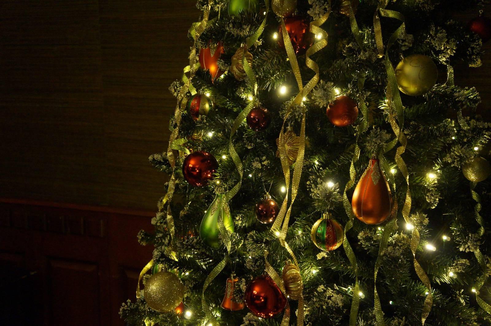 Гражданин р перед новым годом срубил в лесу три елки за что был