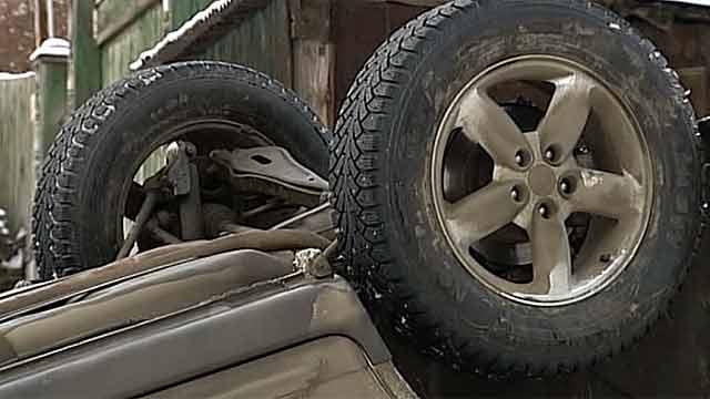 Надороге Сланцы-Кингисепп шофёр  сбил лося исам умер  под колёсами