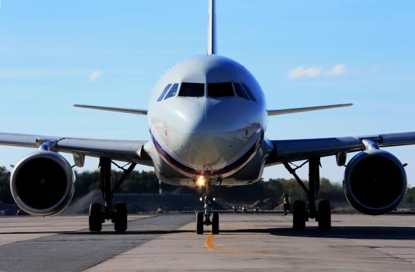 Пассажирский самолет вернулся воВнуково из-за столкновения сптицей