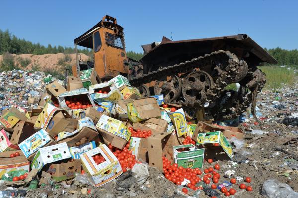 Республика Беларусь стала крупнейшим рынком сбыта для турецких томатов