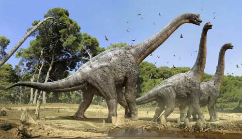 Найденного вКемеровской области динозавра назвали сибиротитаном