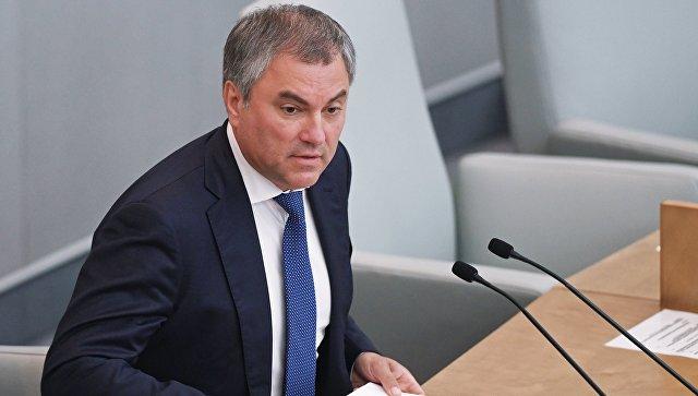 Парламент хочет продолжить работу смолодежью вформате разговора — Володин