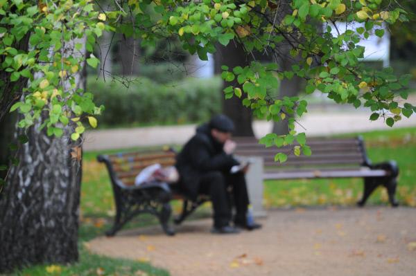 Ленинский проспект иПарк Горького свяжет новая пешеходная зона в столицеРФ