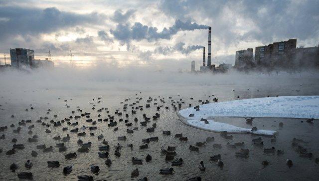 Столицу России скуют январские морозы— Феноменальное похолодание