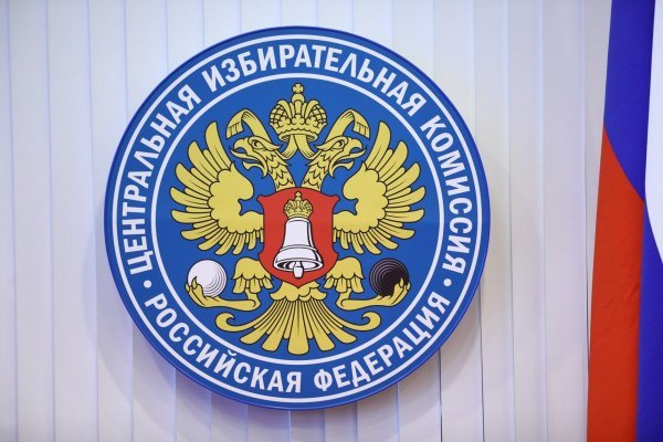 Центризбирком одобрил еще два варианта формулировки вопроса для пенсионного референдума