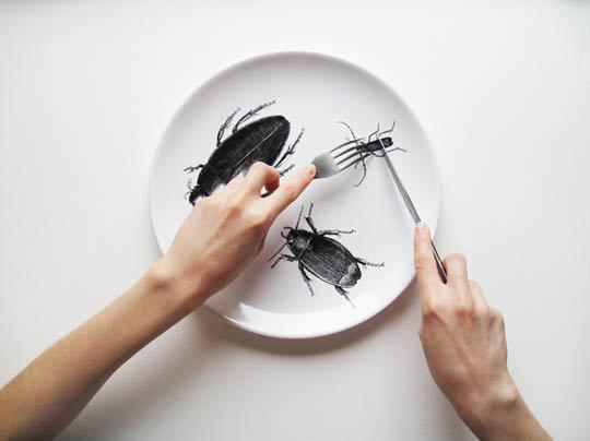 Замена мяса насекомыми понизит парниковый эффект— Ученые