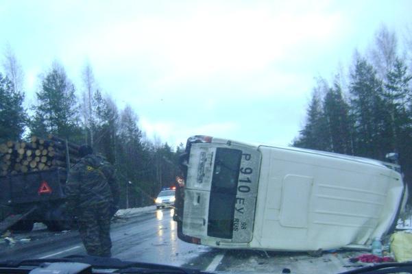 Семь человек стали жертвами трагедии вВологодской области