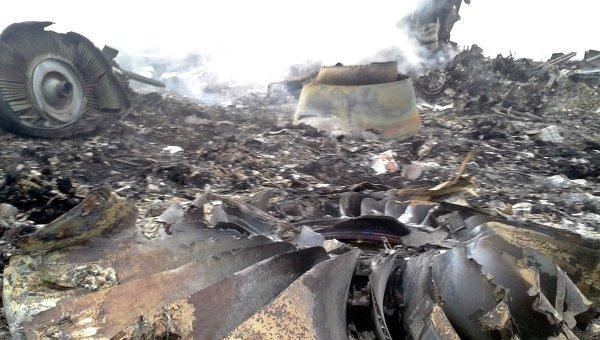 5  стран объединились для наказания виновных вкрушении MH17